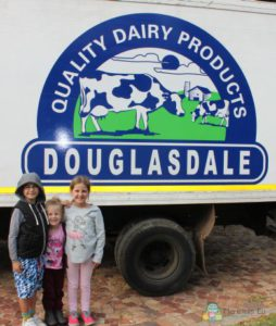 Douglasdale dairy field trip