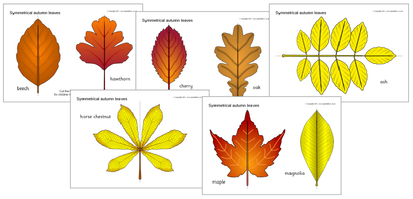 Autumn Resources
