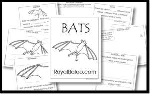 Bat Resources