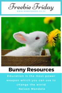 Bunny Resources