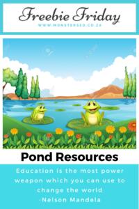 Pond Resources